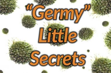 Germ Secrets